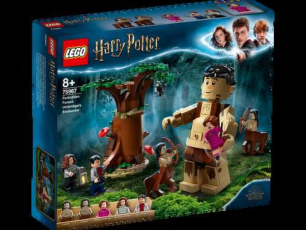 LEGO® Der Verbotene Wald: Begegnung mit Umbridge 75967